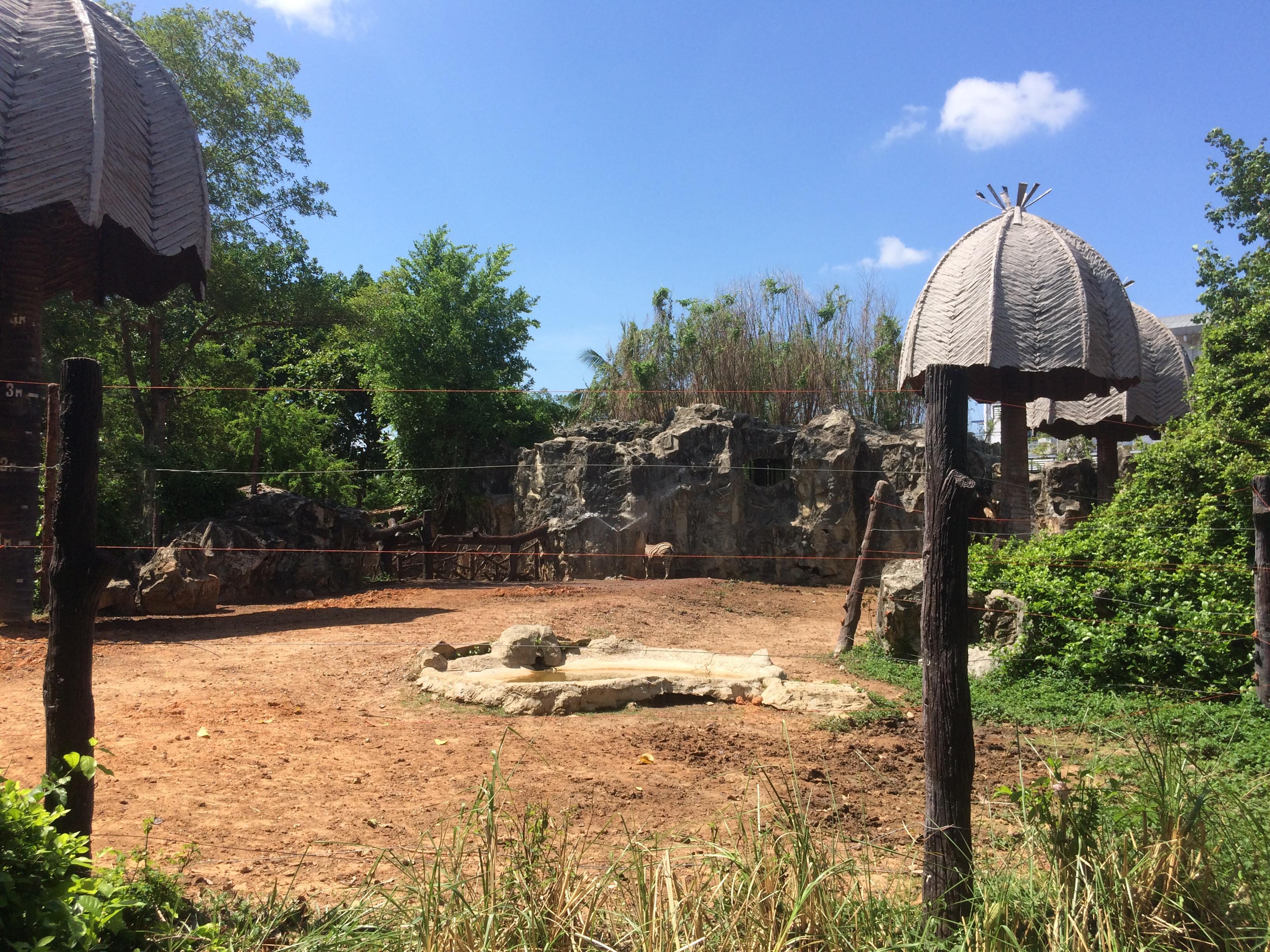 タイの動物園は近代的だった。