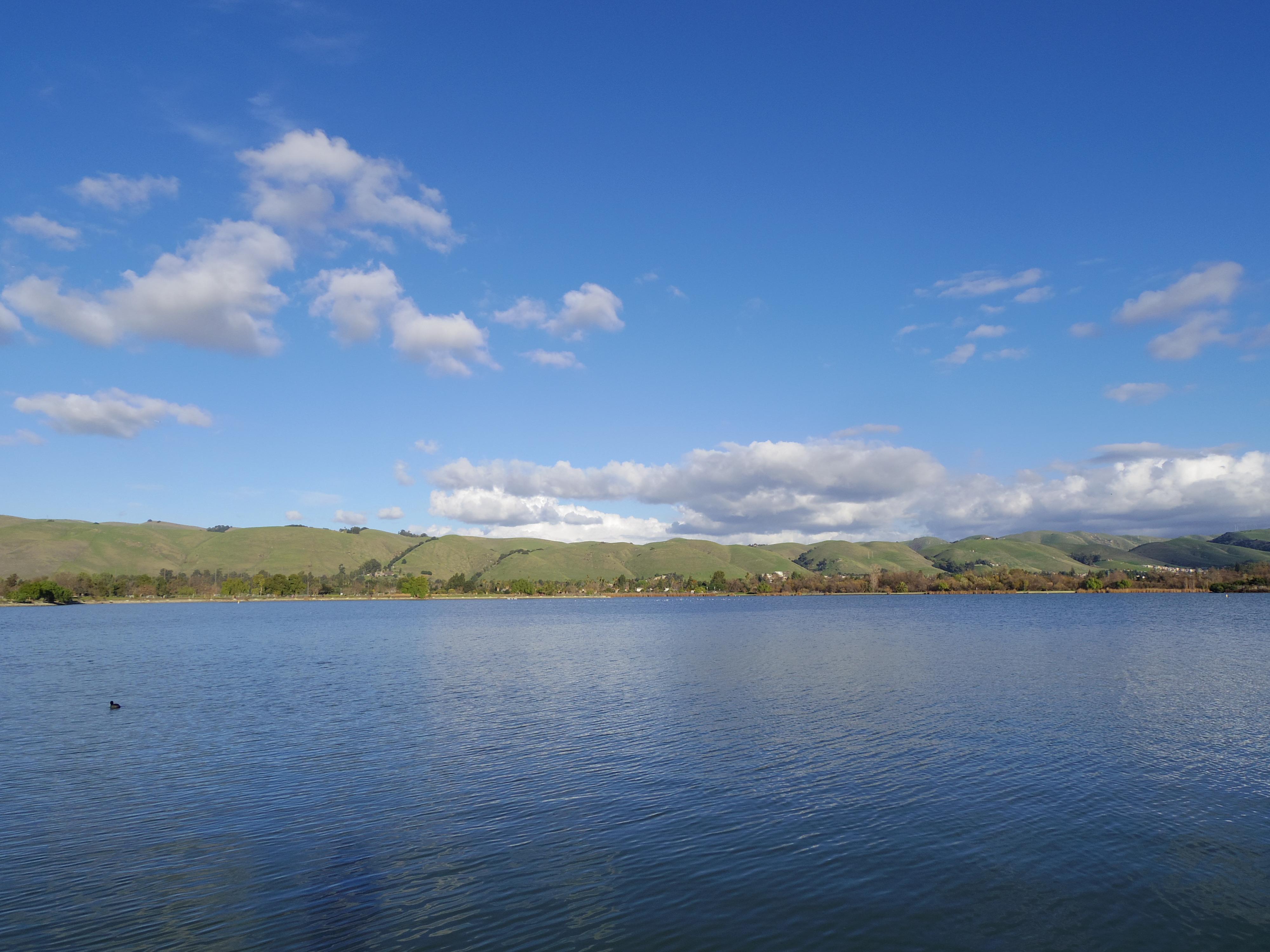 フレモントの湖と、日本食プレゼントと、カウチサーフィン最終夜。