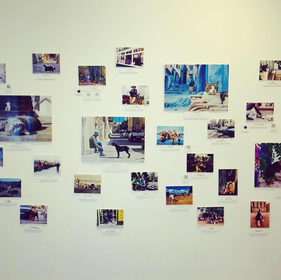 仙台での写真展の報告